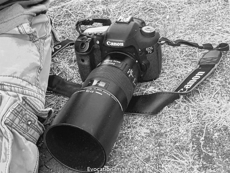 Canon EOD 7D